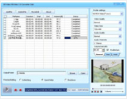 DDVideo Wii Video Converter Gain