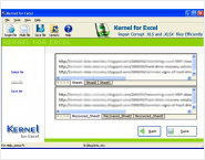 Microsoft Excel Recovery