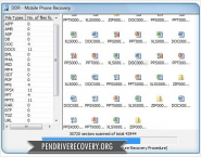 Mobile Phone Pictures Recovery